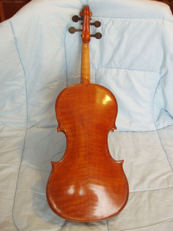Giuseppe Carlo Bobbi - viola foto 3