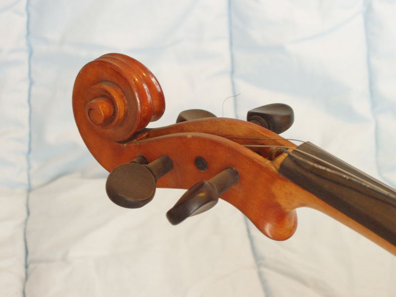 Giuseppe Carlo Bobbi - viola particolare