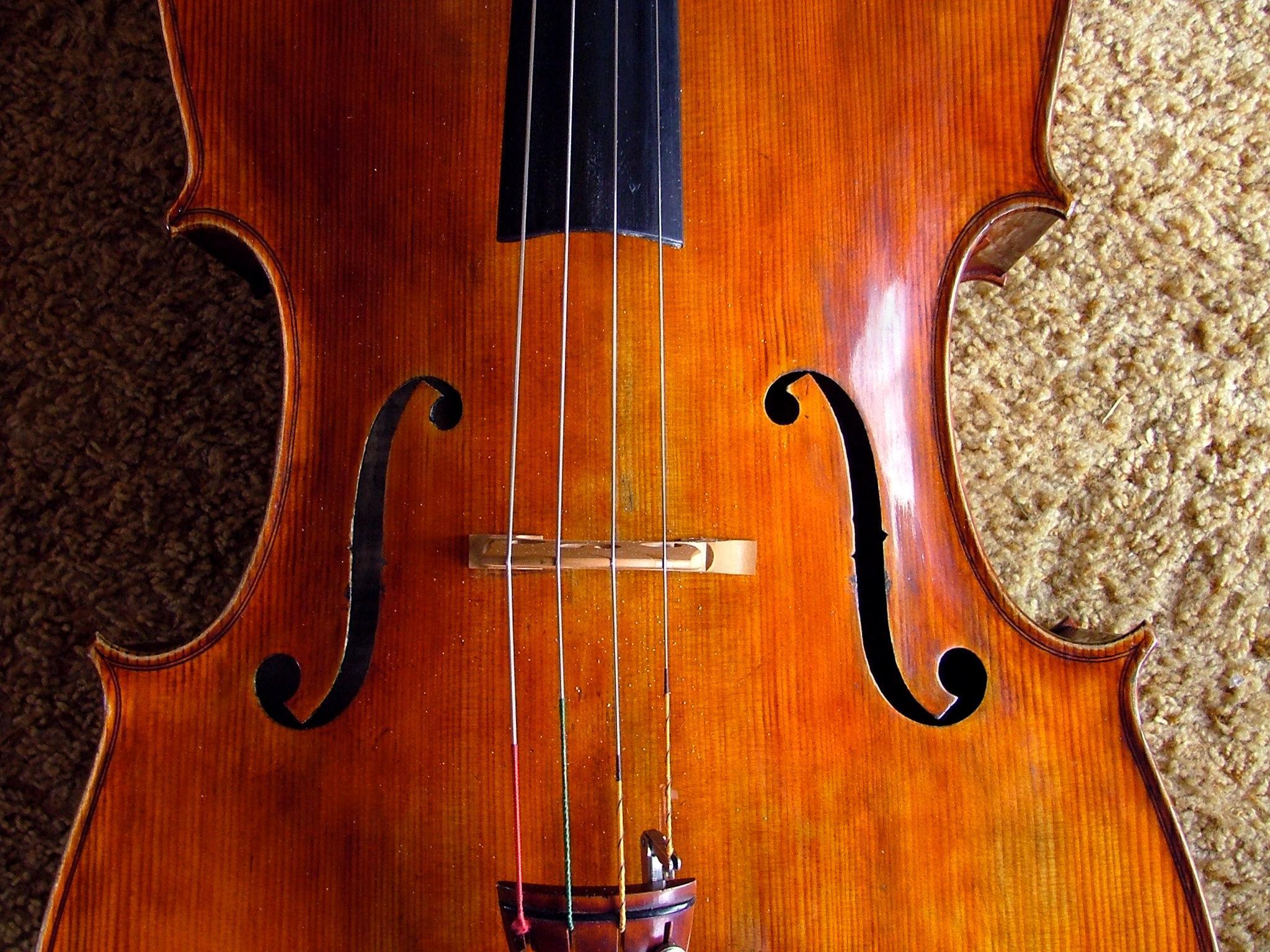 Giuseppe Carlo Bobbi - Violoncello foto 2