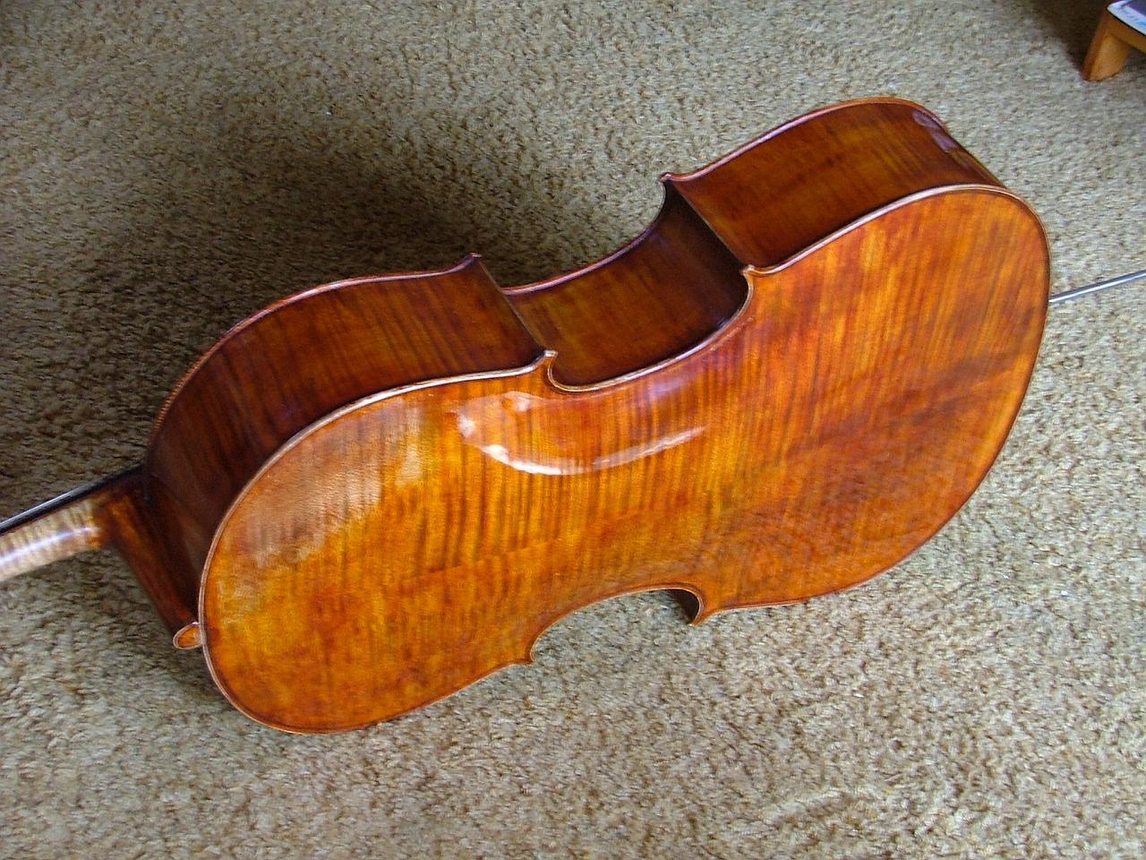 Giuseppe Carlo Bobbi - Violoncello foto 3
